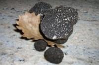 Marché aux truffes nocturne   Ravioles truffes & Feux d'artifice